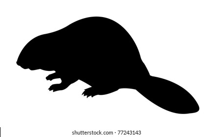 beaver silhouette images stock photos vectors shutterstock rh shutterstock com Rabbit Tracks Clip Art Black and White Coyote Tracks Clip Art