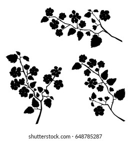 Vector silhouette of the branches of Apple trees with flowers, black color, isolated on white background