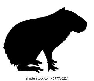 Vector silhouette of the Capybara.