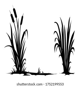 Vector silhouette of cattail isolated on white background