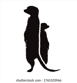 Vector silhouette of couple of meerkat on white background. Symbol of animal.