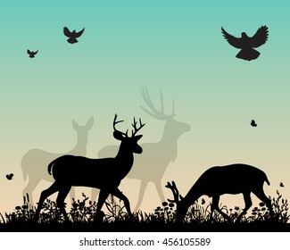 vector silhouette deer on nature