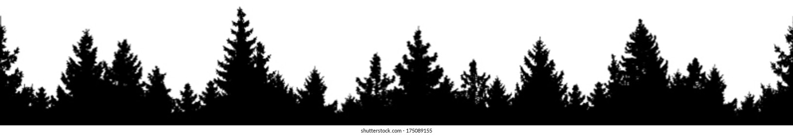 Vector silhouette of detailed and seamless Spruce forest.