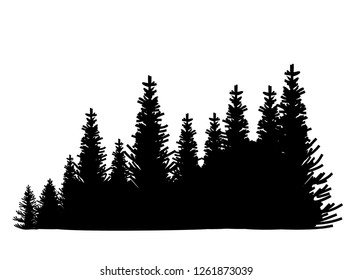 Vector silhouette of detailed Spruce forest.