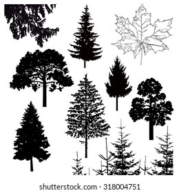 Vector silhouette of different trees. Can be used as poster, badge, emblem, banner, icon, sign.