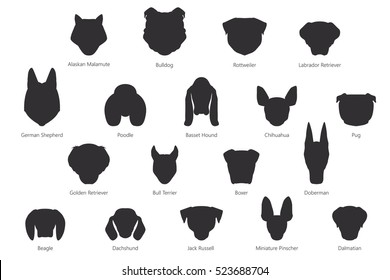 Vector silhouette of dog breeds isolated on white background.
