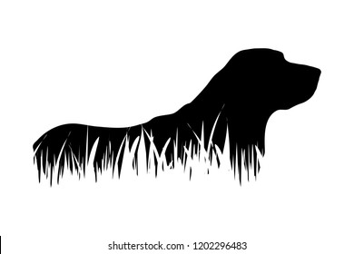 Vector silhouette of dog in the grass on white background.