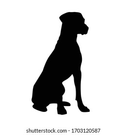 Vector silhouette of a dog on a white background.
