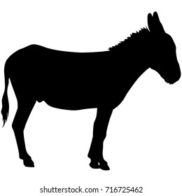 vector silhouette of donkey