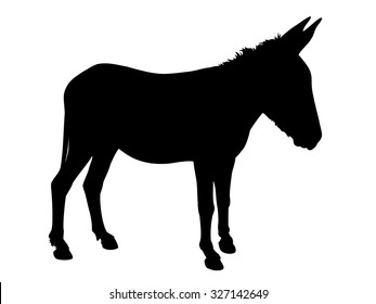 Vector of the silhouette of a donkey, over a white background