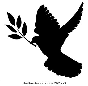 vector silhouette of dove with olive