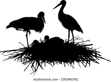 vector silhouette family of storks in the nest