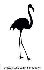 Vector silhouette of flamingo on white background