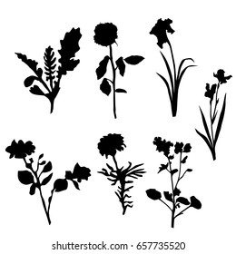 Vector silhouette flowers, black color, isolated on white background