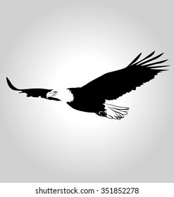 Vector silhouette flying eagle.