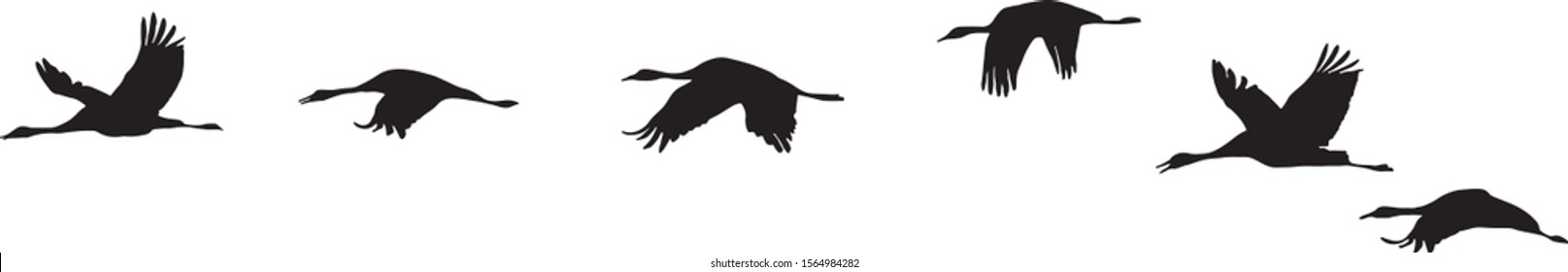 Vector Silhouette of Flying Geese