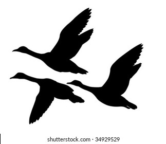 vector silhouette flying geese on white background