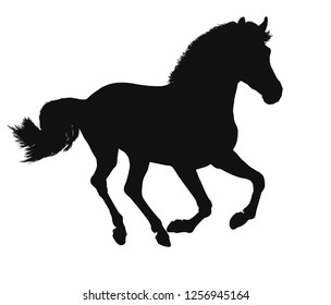 Vector silhouette of a freely cantering horse.