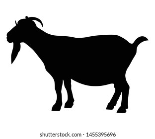 Vector silhouette of a goat for Ied Al-Adha moment