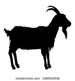 Vector Silhouette of Goat. Side View He-goat Illustration