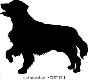 Vector silhouette of a golden retriever dog