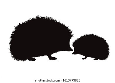 Vector silhouette of hedgehog on white background. Symbol of forest´s animal. Mother and baby stay together.