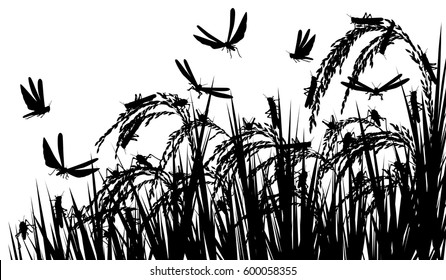 Vector silhouette illustration of a swarm of locusts attacking rice plants and threatening food security with locusts as separate objects