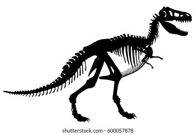 Vector silhouette illustration of a Tyrannosaurus rex skeleton