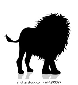 Vector silhouette of lion on white background.