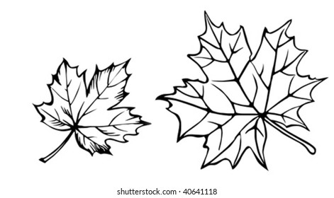 Maple Leaf Tattoo Images Stock Photos Vectors Shutterstock