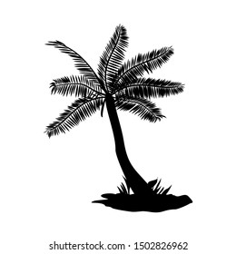 vector silhouette of palm trees, palm with black and white