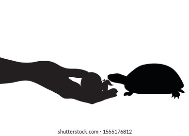 Vector silhouette of person who give food turtle on white background. Symbol of animal, eat, care, save.