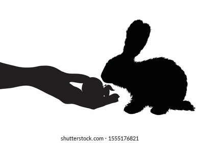 Vector silhouette of person who give food his rabbit on white background. Symbol of animal, pet, eat, care, save, vet, veterinary, farm.