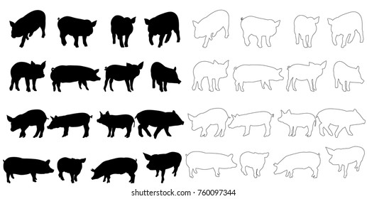 vector, silhouette of a pig set