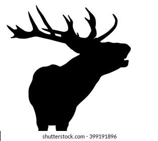 Vector silhouette of the Red Deer (Elk) stag roaring.