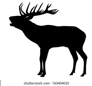 Vector Silhouette of Red Deer standing and Roaring.