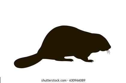 vector silhouette of a sitting beaver