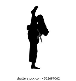 Ilustraciones, imágenes y vectores de stock sobre Taekwondo
