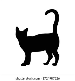Vector silhouetted cat. A pet. Silhouettes of cats. Animal awaits