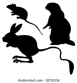 vector silhouettes animal on white background