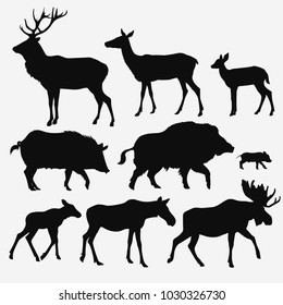 Vector silhouettes of animals on white background
