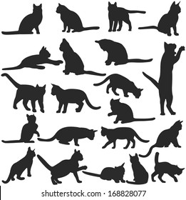 Vector silhouettes of cats collection