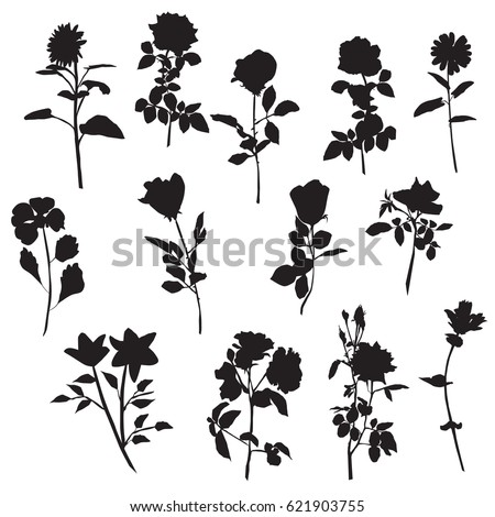 Vector Silhouettes Different Kinds Flowers Rose Stock Vector
