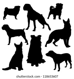 Vector silhouettes of dogs of different breeds isolated on a white background/Dog