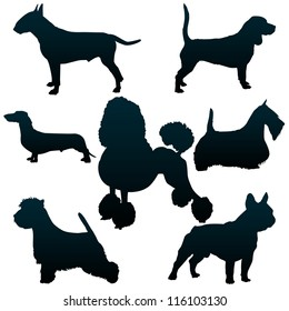 Vector silhouettes of dogs for your design