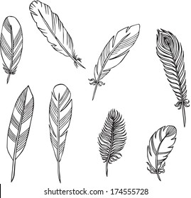 vector silhouettes of feathers