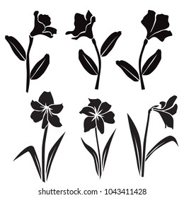 Vector silhouettes of flowers, rhododendron, lily, blossom,  black color isolated on white background