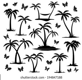 vector silhouettes of palm trees and butterflies on white background