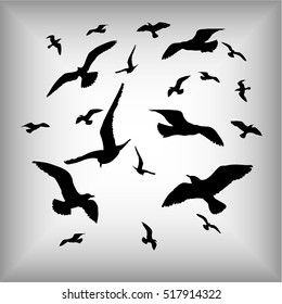 Vector silhouettes of sea gulls isolated