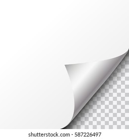 Vector silver curled paper corner with transparent background and space for text